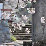 徳川信康(松平信康)の切腹の理由について、様々な説を紹介!